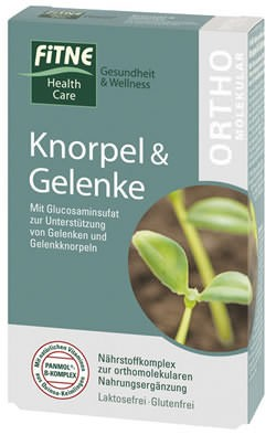 FITNE Nährstoffkomplex Knorpel & Gelenke Kapseln 60 Stück
